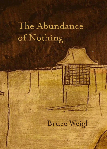 The Abundance of Nothing - Available from Northwestern University Press