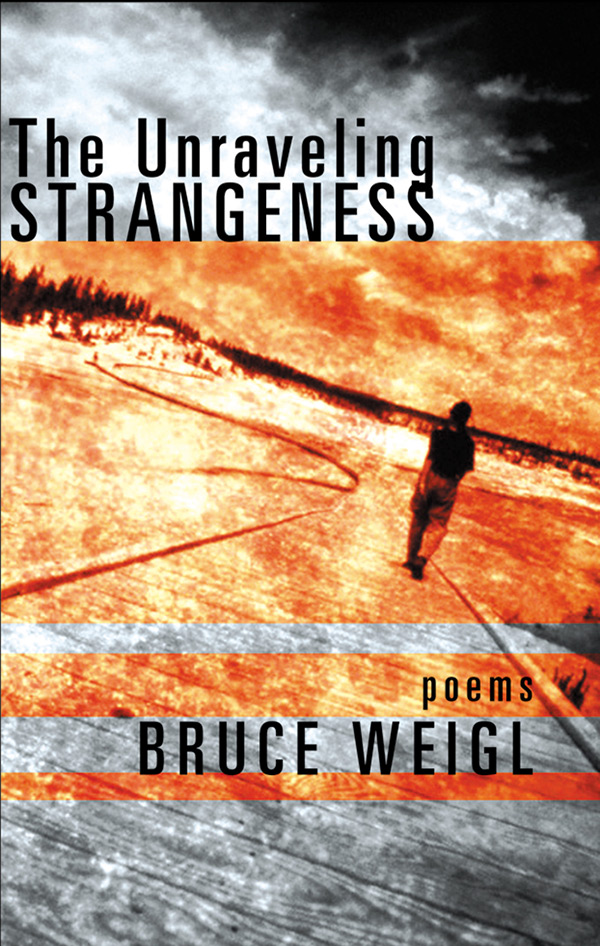 The Unraveling Strangeness - Available from Grove Atlantic